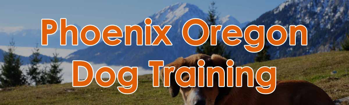 Phoenix Oregon Dog Training